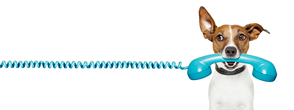 Importanta centralei telefonice permanente