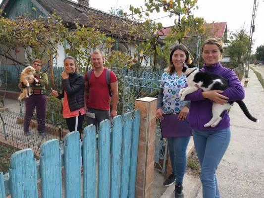 World Dog Day - October 10, 2018. The campaign for identification, microcipation and vaccination against rabies of domestic carnivores continues in the Danube Delta