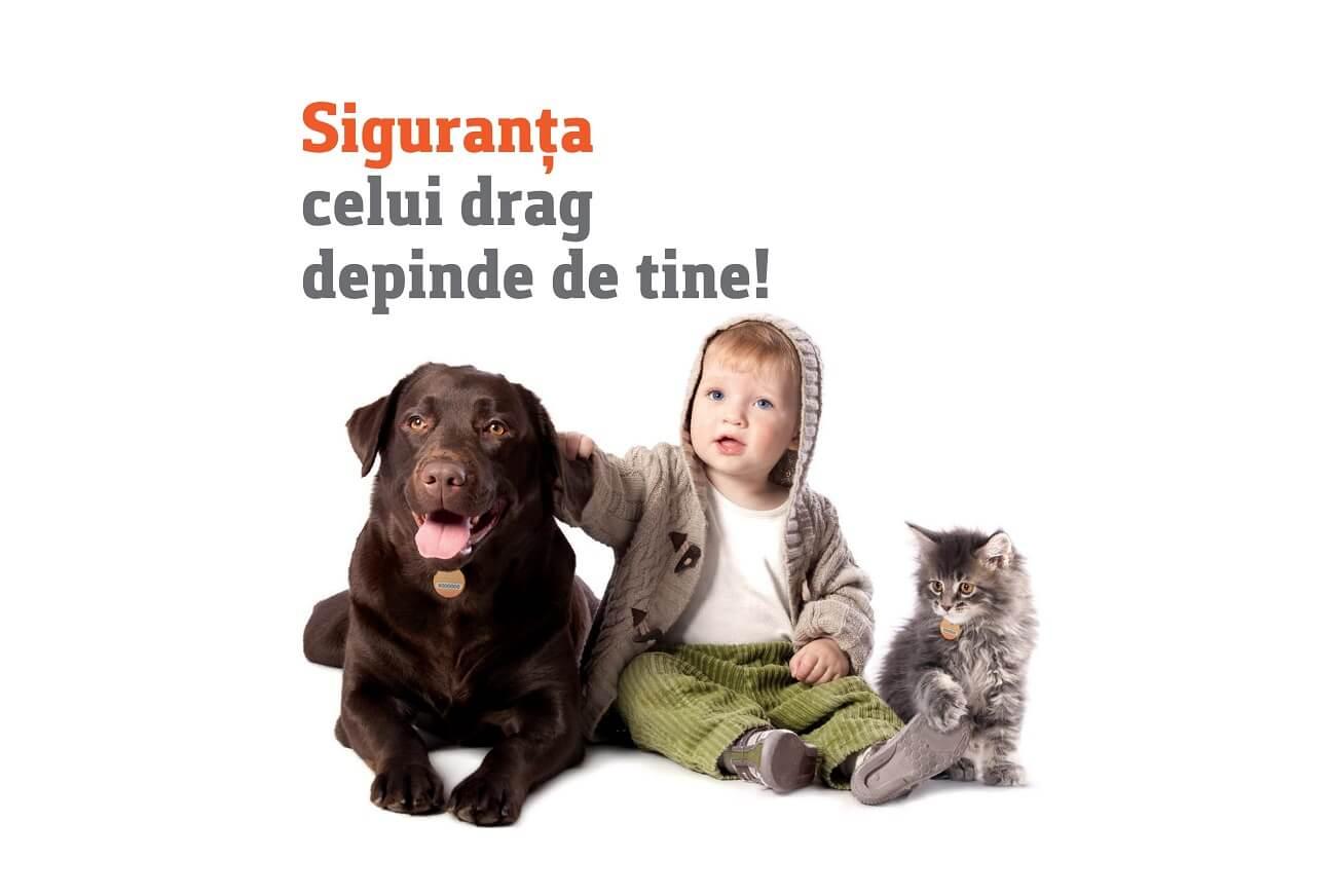 ziua mondiala a animalelor 4 octombrie